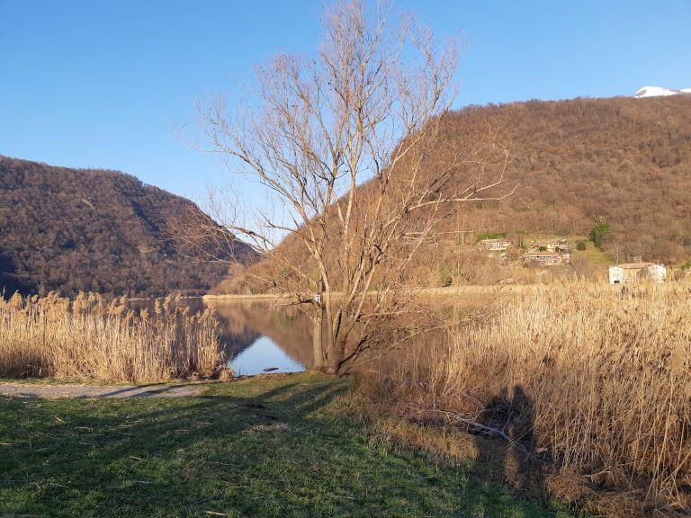 Lago di Segrino