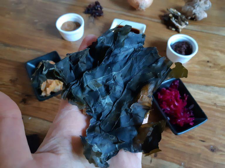 alga kombu contiene glutammato umami