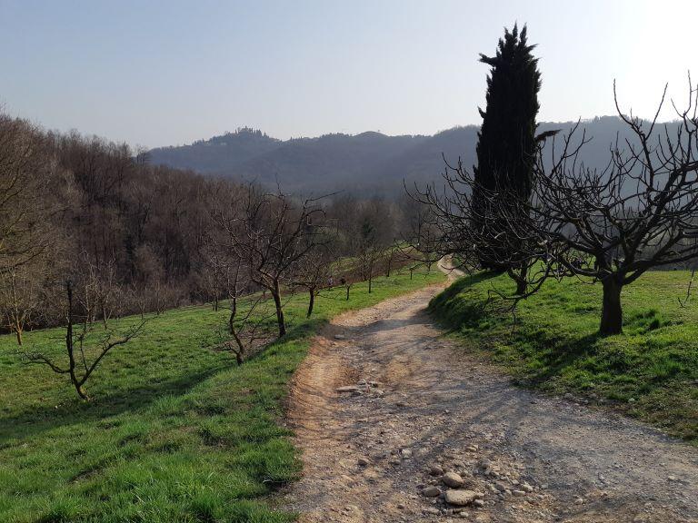 Parco Montevecchia e Curone 10