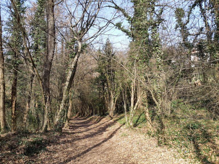 Parco Montevecchia e Curone 2