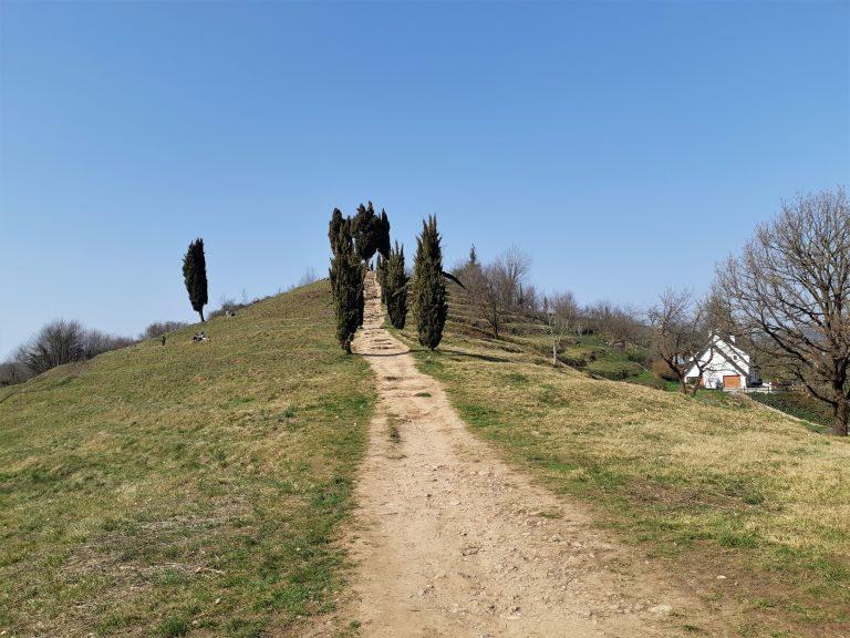 Parco Montevecchia e Curone 3